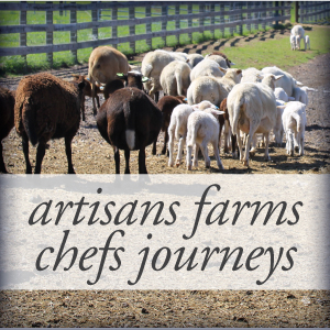 Artisans Farms Chefs Journeys