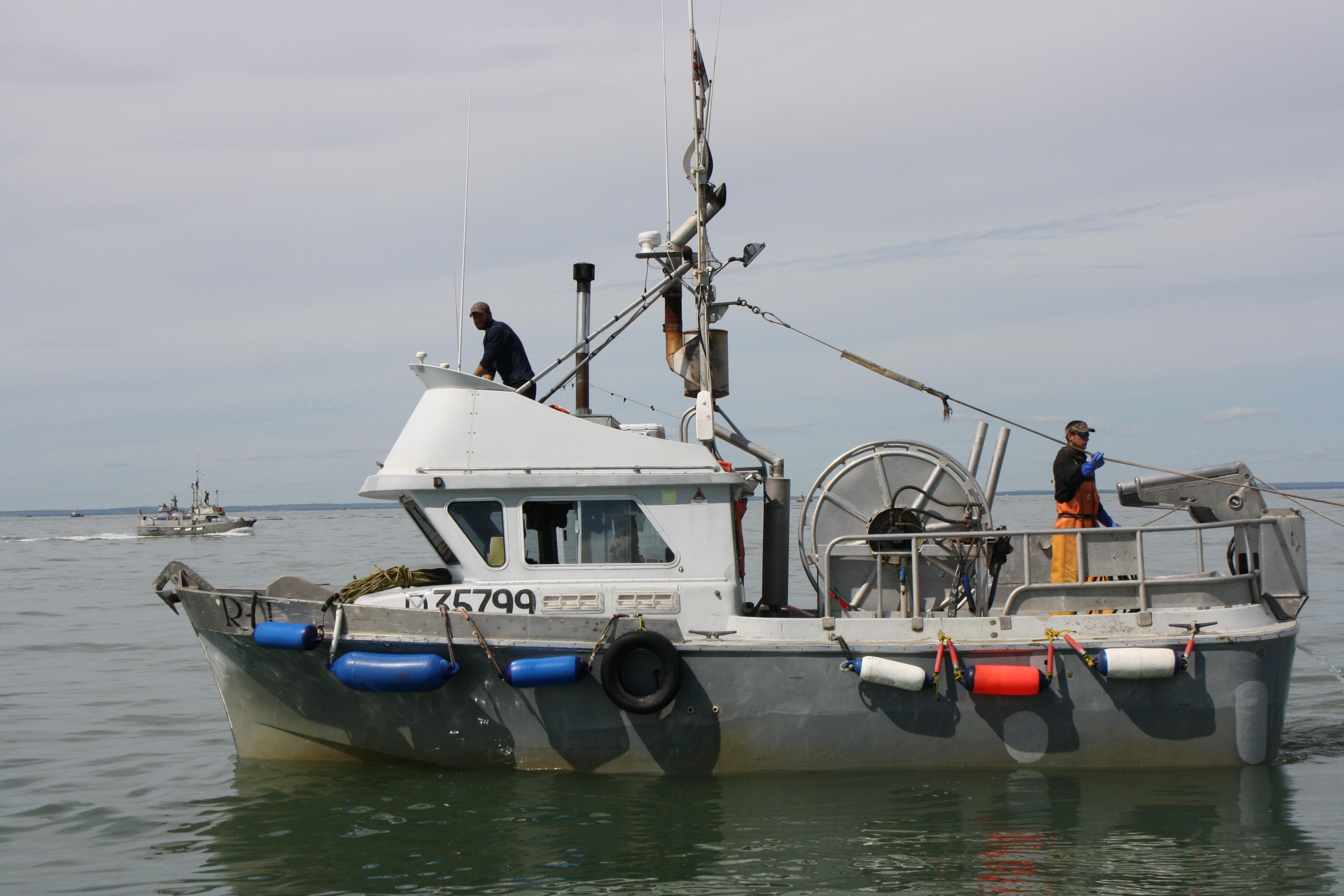 Alaskan Wild Sockeye Salmon Bristol Bay Alaska to Bloomsburg