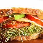 Avocado and Alfalfa Sprouts on Seven Grain Bread