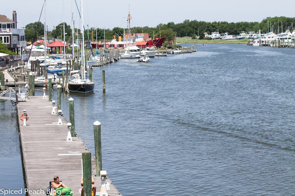 Lewes, Delaware 'Picnic in the Park'