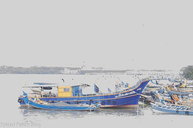 harbor boat in Kochi