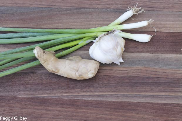 scallions ginger and garlic